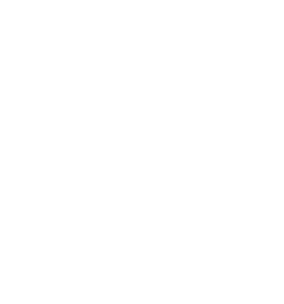 image of a spinning flower