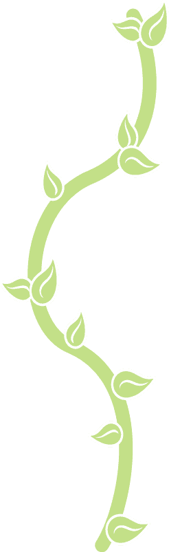 vector image of a green branch